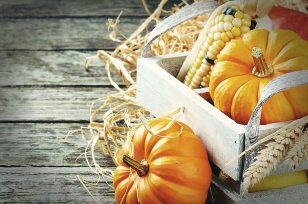 Get Autumn Ready… 5 marketing ideas to increase your gift voucher sales
